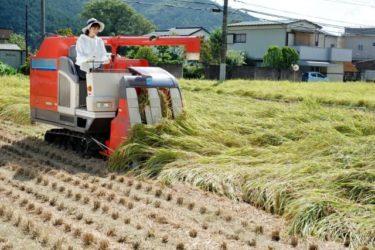 農業融資審査の動向